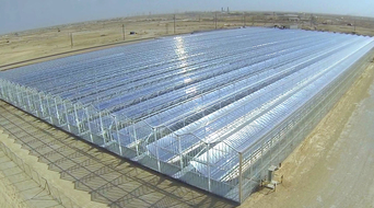 Glasspoint hires local Omani firm for CSR activity