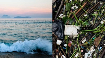 AkzoNobel, Ocean Cleanup join hands for the largest clean-up in history