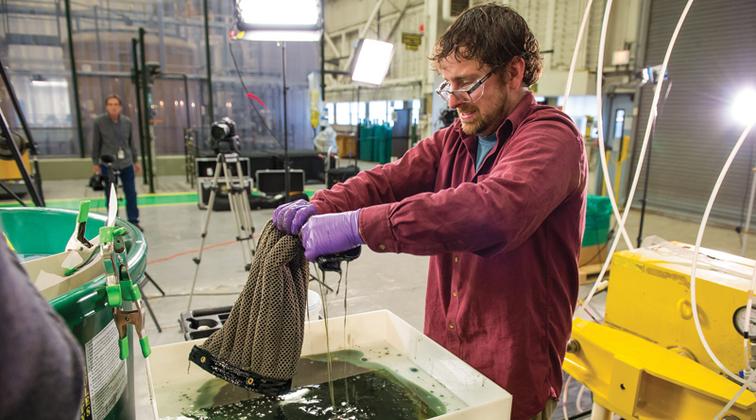 Oleo sponge soaks up oil spills from water column