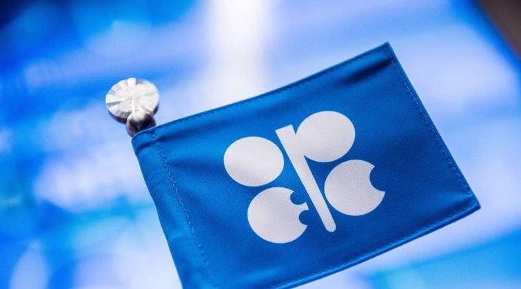 OPEC February oil output plunges on Libyan unrest, supply cuts