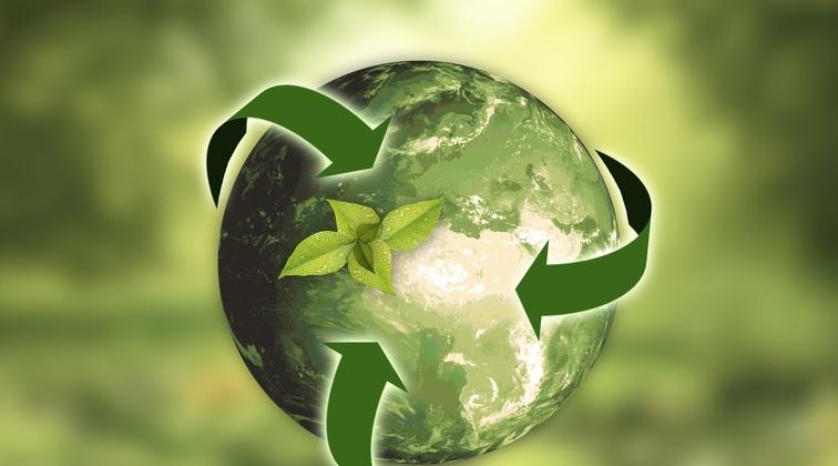DNV GL approves carbon capture technology