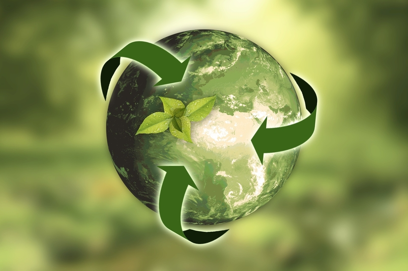 Sustainability, Environment, Climate change
